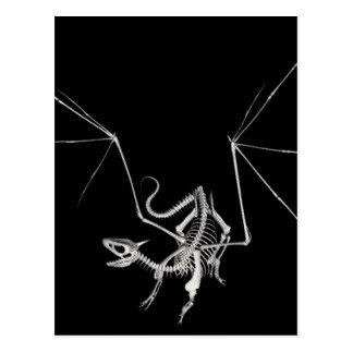 3D Halftone Skeleton Dragon 4 Postcard