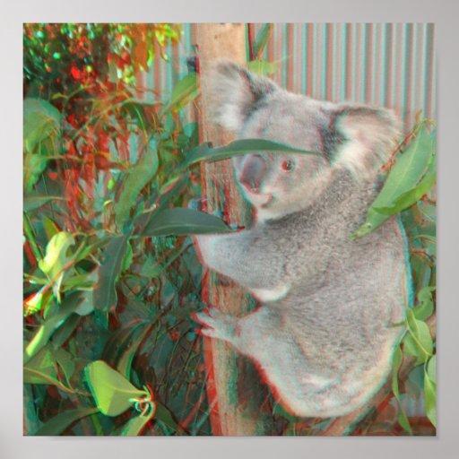 3D Koala Poster