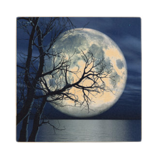 3D Landscape Background With Moon Over The Sea Wooden Coaster