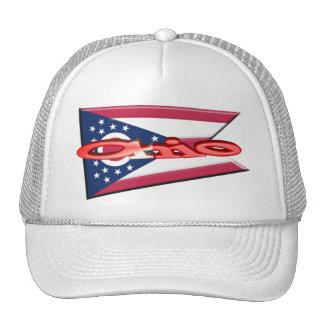 3D Ohio State Flag Trucker Hat