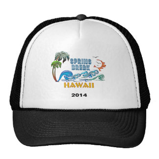 3D Palms Waves Sunset Spring Break HAWAII Trucker Hat