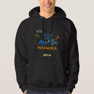 3D Palms Waves Sunset Spring Break PENSACOLA Hoodie
