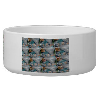 3d Pearl Precious Stone Collection Dog Water Bowl