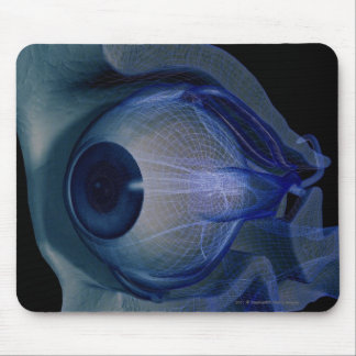3d wireframe of the eye muscles in a socket mouse pad