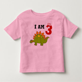 3rd birthday party gift, dinosaur stegosaurus toddler t-shirt