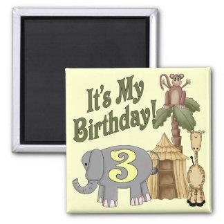 3rd Birthday Safari Refrigerator Magnet