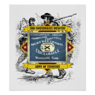 3rd Confederate Infantry (soldier) Print