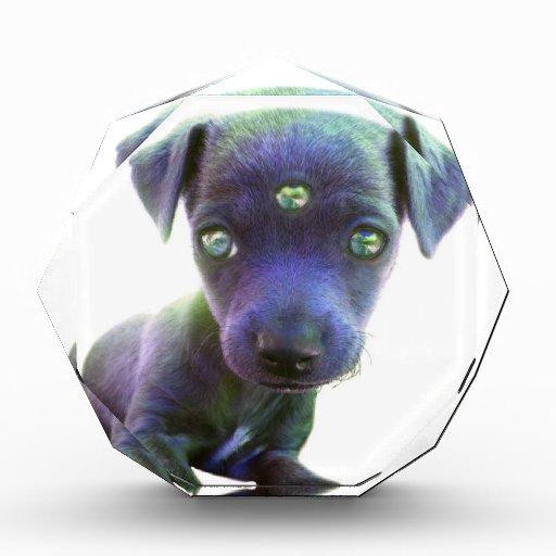 3rd Eye Alien ∆ Acrylic Award