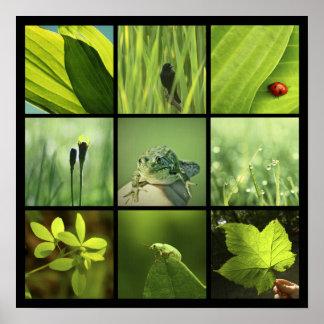 3x3 green nature photos Print