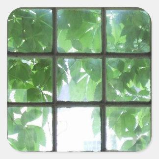 3x3 square sticker