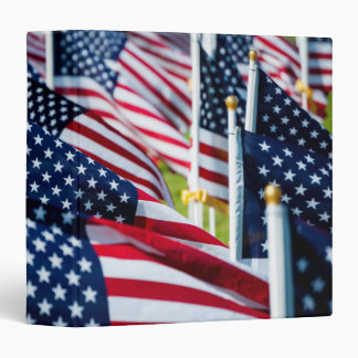 400 flags waving proudly in a field 3 ring binders