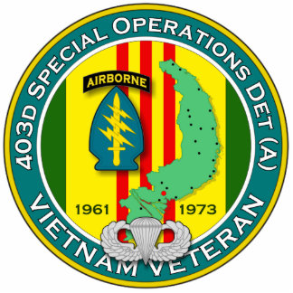 403d SOD-A - ASA Vietnam Cutout
