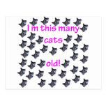 40 cabezas del gato viejas postal