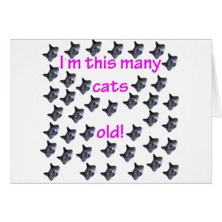 40 cabezas del gato viejas tarjeta de felicitación