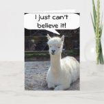 40? THIS LLAMA CANNOT BELIEVE IT CARD