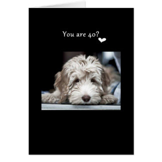 40th I LOVE EVERYTHING THAT HAS MADE U WHO U R NOW Greeting Card