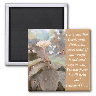 41 13 de Isaías Iman De Frigorífico