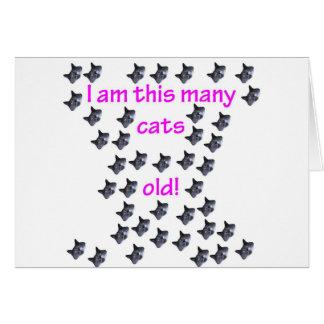 41 cabezas del gato viejas tarjeta de felicitación