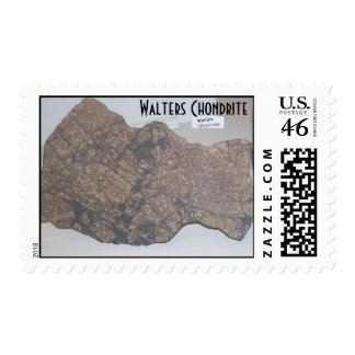 $.41 cent stamps - Walters Chondrite