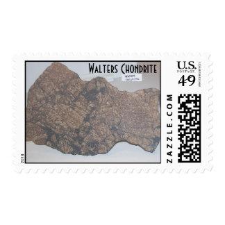 $.41 sellos del centavo - Chondrite de Walters