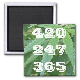 420 247 365 Magnet