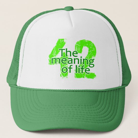 87a413844da 42 Meaning of Life hat