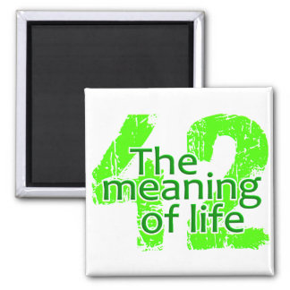42 Meaning of Life magnet