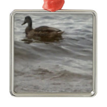 4354 Duck in water Metal Ornament