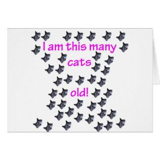 43 cabezas del gato viejas tarjeta de felicitación