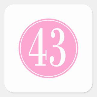 #43 Pink Circle Square Sticker