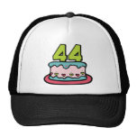 44 Year Old Birthday Cake Hats
