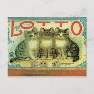 45 Pets postcard