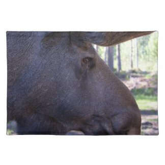 45a Moose Cloth Placemat