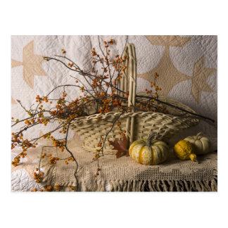 4641 Autumn Still Life Postcard