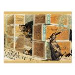 46 mascotas tarjetas postales