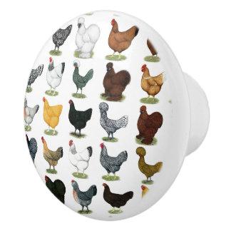 49 Chicken Hens Ceramic Knob