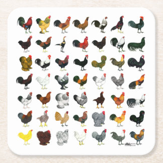 49 Roosters Square Paper Coaster