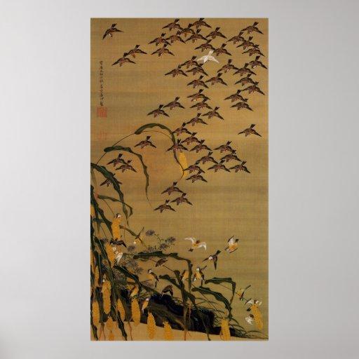 4. 秋塘群雀図, multitud de gorriones, Jakuchū del 若冲 Póster