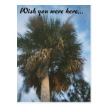 4-11-2007-03, Wish you were here... Postcard