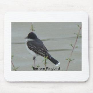 4 29 2009 248, Eastern Kingbird 2 Mouse Pad