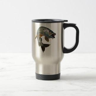 4 almizclados tazas