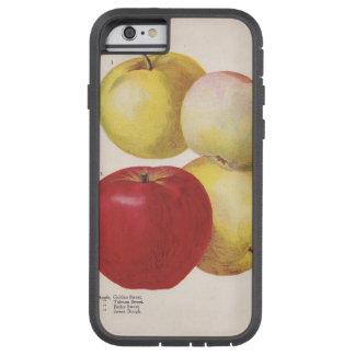4 caso ilustrado del vintage manzanas funda para  iPhone 6 tough xtreme