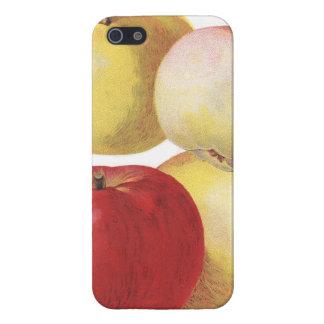 4 caso ilustrado del vintage manzanas iPhone 5 fundas