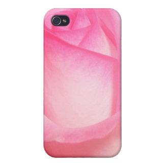 4 color de rosa rosados iPhone 4 coberturas