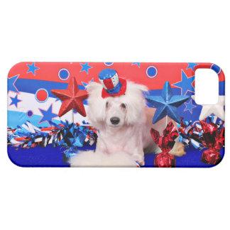 4 de julio - con cresta chino - rociada iPhone 5 protector