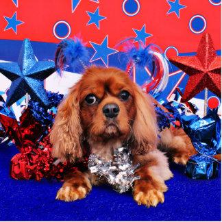 4 de julio - perro de aguas de rey Charles arrogan Esculturas Fotograficas