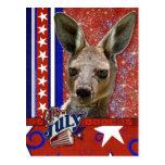 4 de julio petardo - canguro
