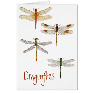 4 Dragonflies Card