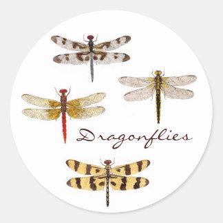 4 Dragonflies Classic Round Sticker