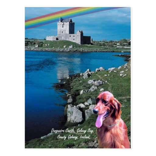 4. Dunguaire Castle View Galway Bay Ireland Postcard